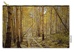 Carry-all Pouch featuring the photograph Road To Gold In Colorado by Steven Reed