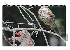 Robin And Cardinal 2664 Carry-all Pouch