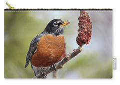 Robin And Sumac Carry-all Pouch