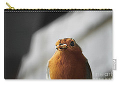 Robin Closeup Carry-all Pouch