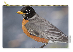 Robin Carry-all Pouch by Douglas Stucky