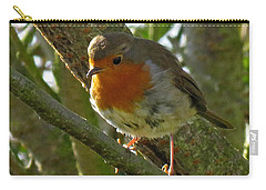 Robin In A Tree Carry-all Pouch by John Topman