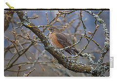 Robin In A Tree Carry-all Pouch by Keith Boone