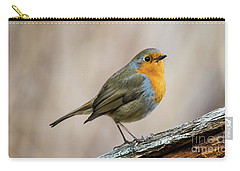 Robin In Spring Carry-all Pouch by Torbjorn Swenelius
