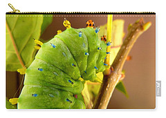 Carry-all Pouch featuring the photograph Robin Moth Caterpillar by Claire Bull