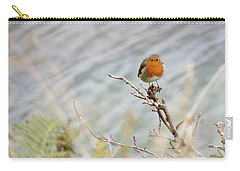 Robin Resting Carry-all Pouch