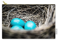 Robin's Eggs Carry-all Pouch by Shelby  Young