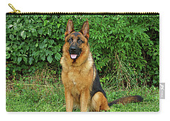 Carry-all Pouch featuring the photograph Rocco Sitting by Sandy Keeton