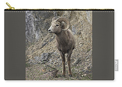 Rockies Big Horn Carry-all Pouch