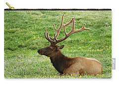 Carry-all Pouch featuring the photograph Rocky Mountain Elk 4 by Marie Leslie