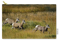 Rocky Mountain Goats 7410 Carry-all Pouch