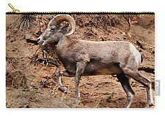 Rocky Mt. Big Horn Sheep Carry-all Pouch
