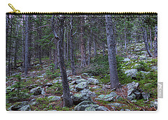 Carry-all Pouch featuring the photograph Rocky Nature Landscape by James BO Insogna
