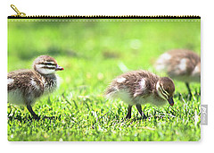 Carry-all Pouch featuring the photograph Rogue Duckling, Yanchep National Park by Dave Catley