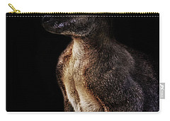 Roo Carry-all Pouch