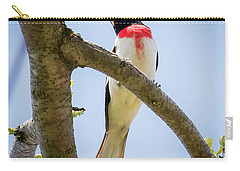 Carry-all Pouch featuring the photograph Rose-breasted Grosbeak Looking At You by Ricky L Jones