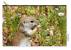 Round-tailed Ground Squirrel Carry-all Pouch