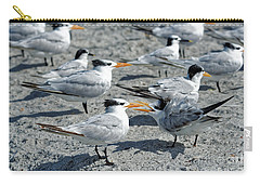 Royal Terns Carry-all Pouch