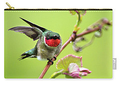 Carry-all Pouch featuring the photograph Ruby Garden Hummingbird by Christina Rollo