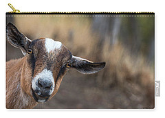 Ruby The Goat Carry-all Pouch by Everet Regal