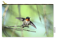 Ruby Throat Carry-all Pouch by David Stasiak