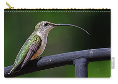 Ruby-throated Hummingbird Tongue Carry-all Pouch