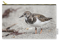 Ruddy Turnstone On The Beach Carry-all Pouch
