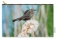 Ruffled Feathers Carry-all Pouch by Mike Dawson
