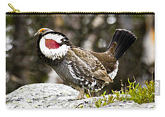 Ruffled Grouse II Carry-all Pouch
