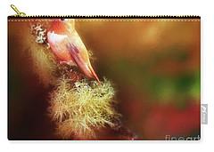 Rufus Hummingbird Carry-all Pouch by Suzanne Handel
