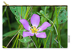 Sabatia Carry-all Pouch by Kenneth Albin