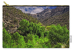 Carry-all Pouch featuring the photograph Sabino Canyon H33 by Mark Myhaver