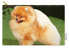 Sable Pomeranian Carry-all Pouch