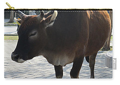 Carry-all Pouch featuring the photograph Sacred Cow 2 by Randall Weidner