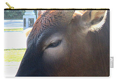 Carry-all Pouch featuring the photograph Sacred Cow 4 by Randall Weidner