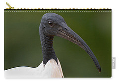 Sacred Ibis Carry-all Pouch by Jouko Lehto