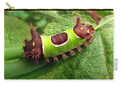 Saddleback Caterpillar Carry-all Pouch