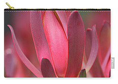 Carry-all Pouch featuring the photograph Safari Sunset 2 by Chris Armytage