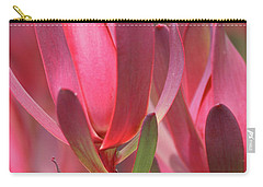 Safari Sunset 4 Carry-all Pouch