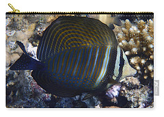 Sailfin Tang  Carry-all Pouch