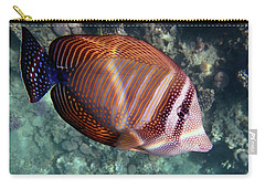Sailfin Tang Makadi Bay Carry-all Pouch