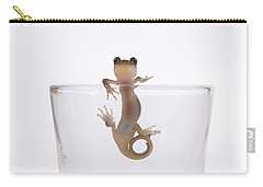 Salamander In A Glass Carry-all Pouch by Sheila Fitzgerald