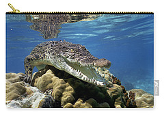 Saltwater Crocodile Smile Carry-all Pouch by Mike Parry
