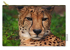 Carry-all Pouch featuring the photograph Samson by Michiale Schneider