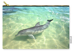 Carry-all Pouch featuring the photograph Samu 1 , Monkey Mia, Shark Bay by Dave Catley