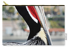 Carry-all Pouch featuring the photograph San Diego Pelican by Kyle Hanson