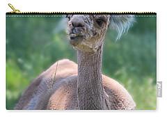 San Juan Alpaca Shear Heaven Carry-all Pouch