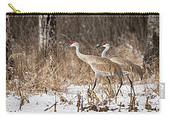 Carry-all Pouch featuring the photograph Sandhill Crane 2016-4 by Thomas Young