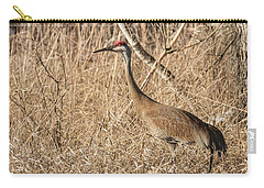Carry-all Pouch featuring the photograph Sandhill Crane 2016-7 by Thomas Young