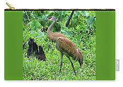 Carry-all Pouch featuring the digital art Sandhill Crane At Sandy Ridge Reservation by Mark Madere